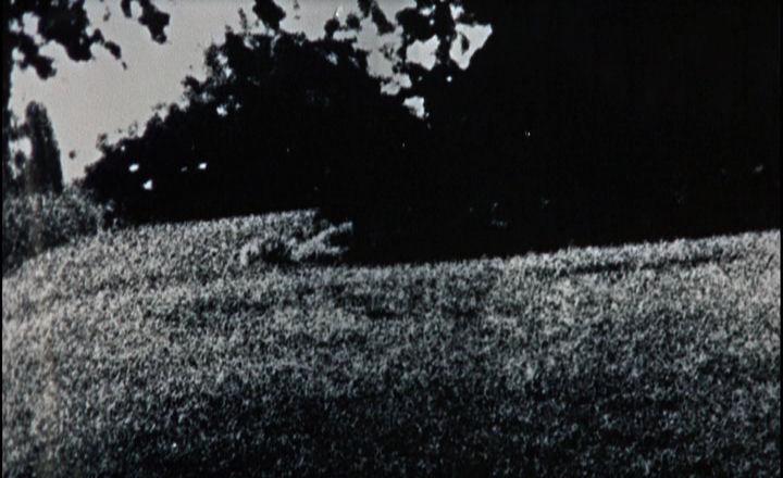 BLOWUP: ANTONIONI'S CLASSIC FILM – Silver Screen Modes by