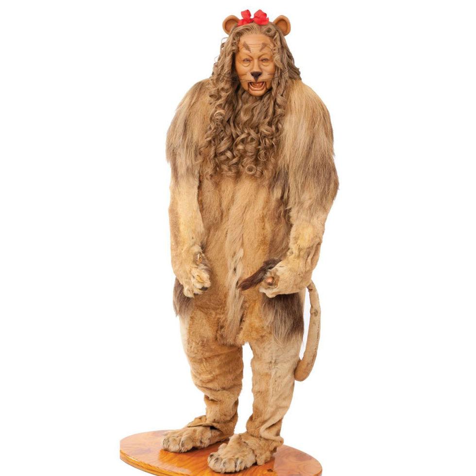 TCM Cowardly Lion
